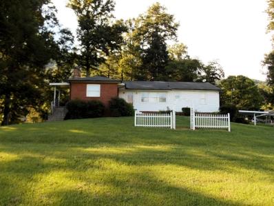 111 Hill Drive, Harriman, TN 37748 - #: 1052143