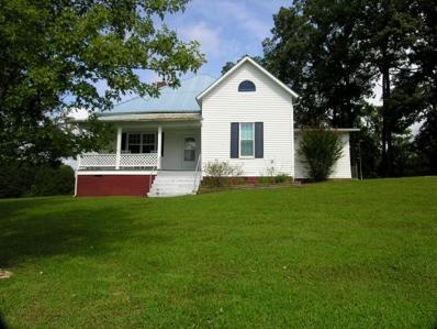 199 & 201 Wilson Circle, Tellico Plains, TN 37385 - #: 1052286