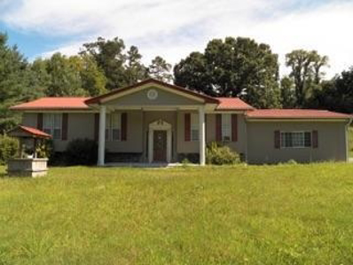 160 Vinsant Hollow Lane, Jacksboro, TN 37757 - #: 1052676