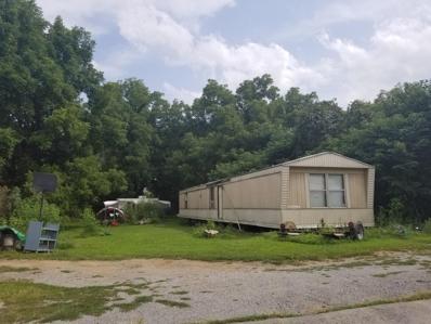 233 Rose Hill Drive, Rose Hill, VA 24281 - #: 1053688
