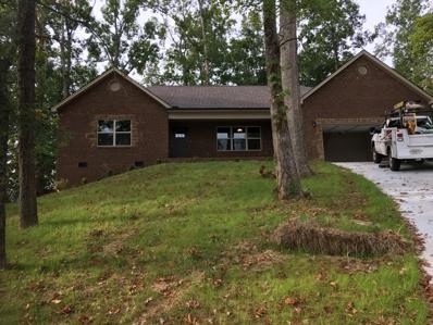 2509 Friar Wood Lane, Sevierville, TN 37876 - #: 1055205