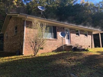 1045 Hubbard Church Rd, Jonesville, VA 24263 - #: 1060902