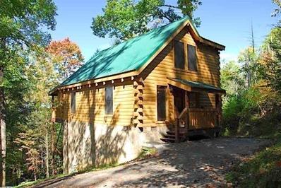 536 Forest Springs Drive, Gatlinburg, TN 37738 - #: 1062866