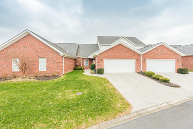 2303 San Lucki Way, Knoxville, TN 37909 - #: 1063211
