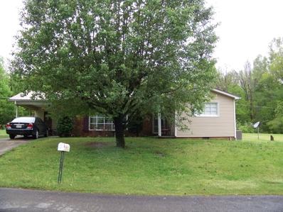 1530 Pennsylvania Ave, Etowah, TN 37331 - #: 1077332