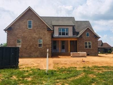 212 Wheatgrass Point Drive, Maryville, TN 37804 - #: 1082321