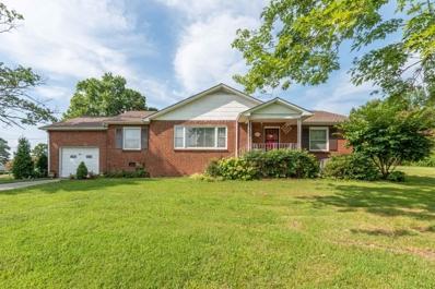 484 Kemmer Rd, Spring City, TN 37381 - #: 1089981