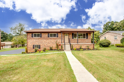 4221 Genny Lynn Drive, Knoxville, TN 37918 - #: 1092453