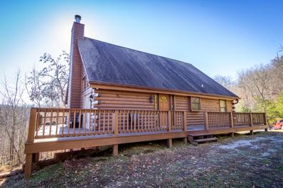 385 Wildcat Hollow Rd, New Tazewell, TN 37825 - #: 1092951