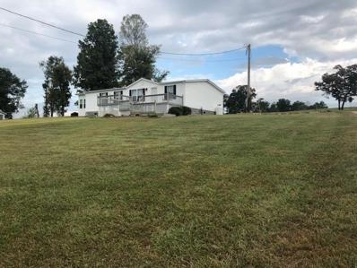308 Fawn Trail Drive, New Tazewell, TN 37825 - #: 1095317
