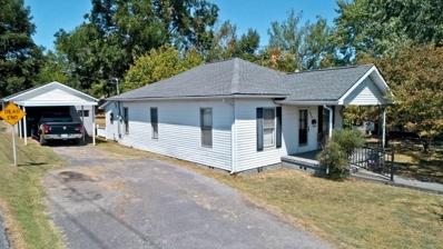 333 Lincoln Ave, Newport, TN 37821 - #: 1095509