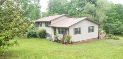 395 Carson Rd, Helenwood, TN 37755 - #: 1118369