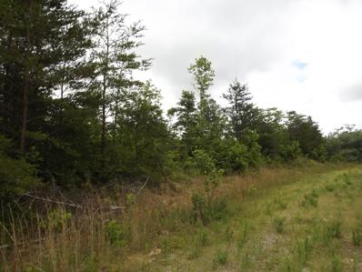Arbutus Trail, Helenwood, TN 37755 - #: 1120200
