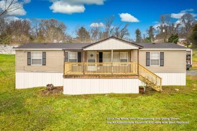 1341 Big Hollow Rd, Blountville, TN 37617 - #: 1137833