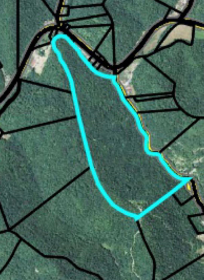 Trace Branch Rd Rd, Flat Lick, KY 40935 - #: 1137842