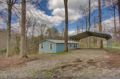 266 Lakeview Terrace, Byrdstown, TN 38549 - #: 1147304