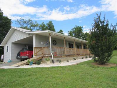 2643 Looney Road, Parrottsville, TN 37843 - #: 573885