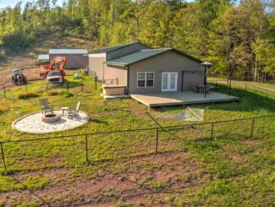 850 Dyer Hollow Road, Mohawk, TN 37810 - #: 577279