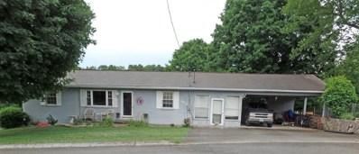 329 Nancy Drive, Jefferson City, TN 37760 - #: 579060