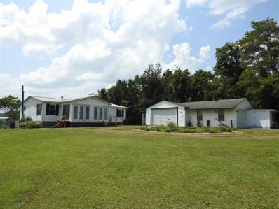 131 Shiloh Road, Parrottsville, TN 37843 - #: 580004