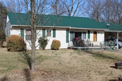 302 Nancy Drive, Jefferson City, TN 37760 - #: 580341