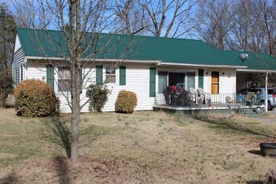 302 Nancy Drive, Jefferson City, TN 37760 - #: 580341