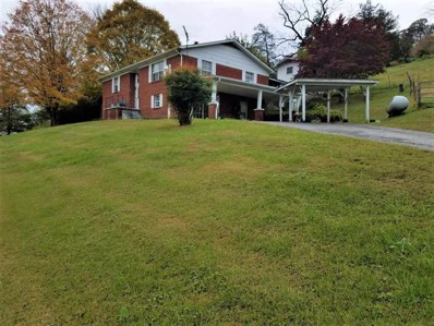 396 Caney Valley Rd, Sneedville, TN 37869 - #: 580962