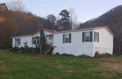 712 Old Mountain Rd, Thorn Hill, TN 37881 - #: 581233