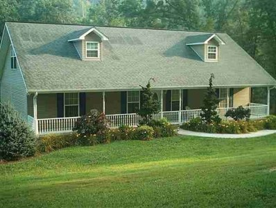 2219 Anderson Bend Road, Russellville, TN 37860 - #: 583150