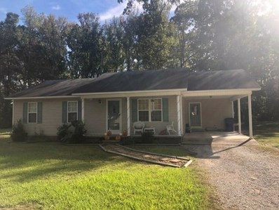 380 Austin St, Savannah, TN 38372 - #: 10039556