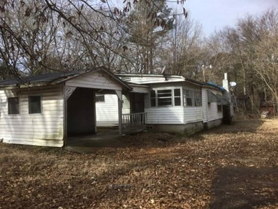 437 Cherokee St, Other, MS 38966 - #: 10043614