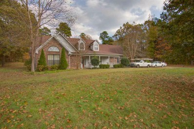 1232 Co 62 Rd, Oakland, MS 38948 - #: 10044479