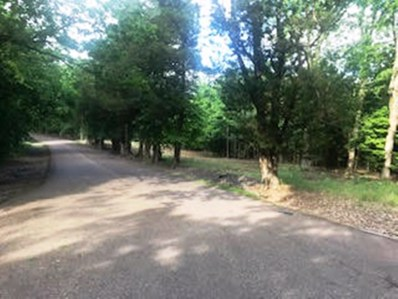 Burrowtown Rd, Unincorporated, TN 38036 - #: 10052603