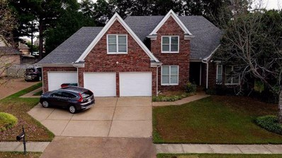 8915 River Pine Dr, Unincorporated, TN 38016 - #: 10062686