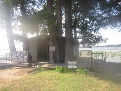 Lakeview Dr, Tiptonville, TN 38254 - #: 9987902