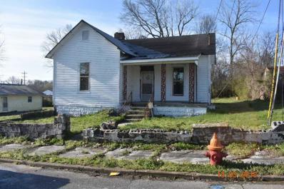 204 Columbian Ave, Mount Pleasant, TN 38474 - #: 1910994