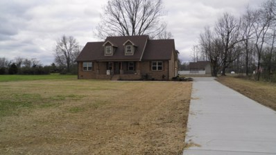 1704 Mount View Road, Manchester, TN 37355 - #: 1923571