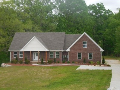 685 Mt Olivet Rd, Columbia, TN 38401 - #: 1926742