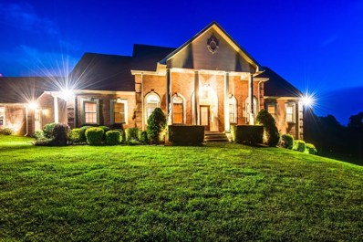 7231 Shoals Branch Road, Primm Springs, TN 38476 - #: 1940797