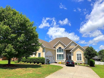 104 Clearview Ct, Springfield, TN 37172 - #: 1965465