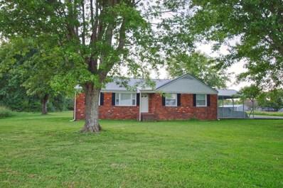 700 Hollow Springs Rd, Woodbury, TN 37190 - #: 1968986