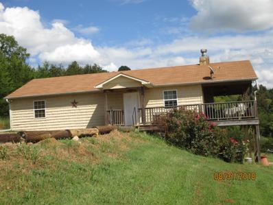 1119 Mitchell Rd, Pulaski, TN 38478 - #: 1969104