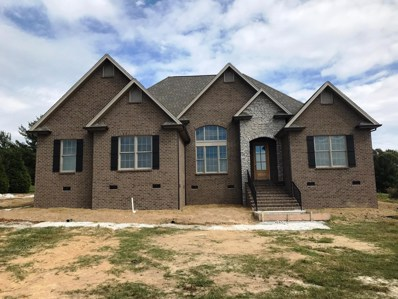 252 Waterford Dr, Manchester, TN 37355 - #: 1973296