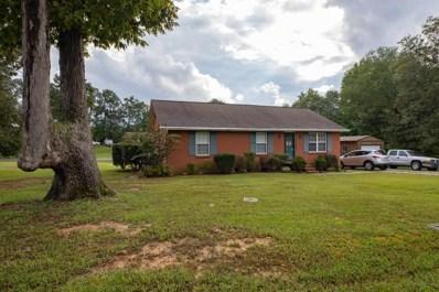 805 Herbert Cv, New Johnsonville, TN 37134 - #: 1974213