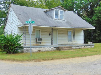 222 Appletree St, Mount Pleasant, TN 38474 - #: 1987341