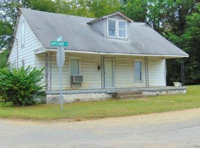 222 Appletree St, Mount Pleasant, TN 38474 - #: 1987341