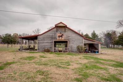 357 Pickle Rd, Lewisburg, TN 37091 - #: 1990874