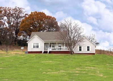 4107 Roy Thompson Rd, Mount Pleasant, TN 38474 - #: 1991388