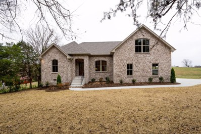 1134 Old Clarksville Pike, Pleasant View, TN 37146 - #: 1991716