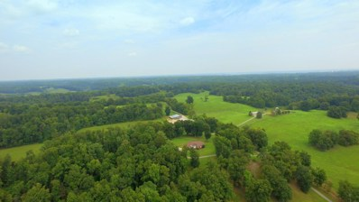 1910 Smith Hollow Rd, Lynnville, TN 38472 - #: 2003455